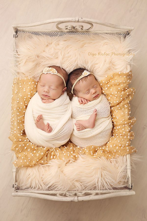 newborn twin girls photo