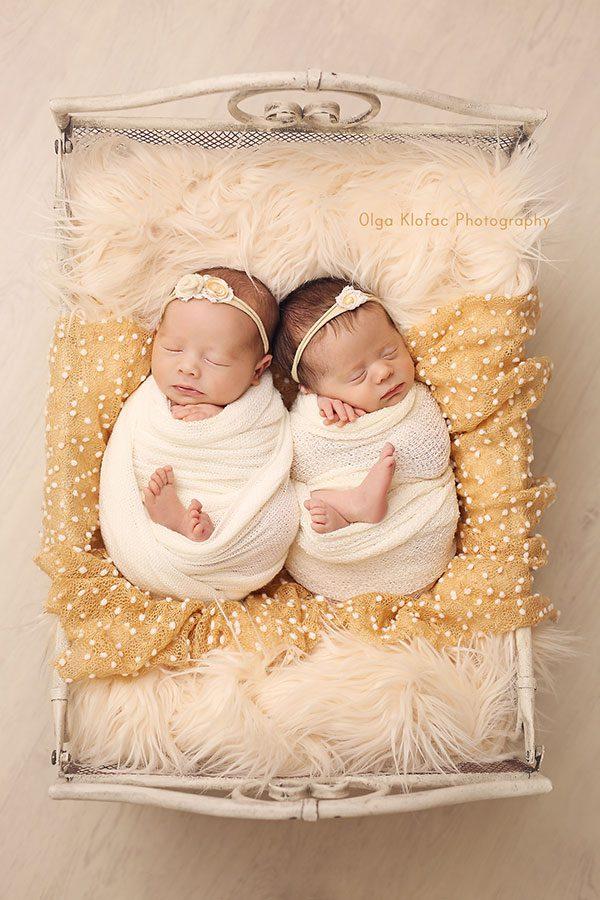 newborn twin girls photo